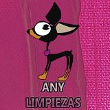 Any Limpiezas Vitoria