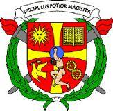 Plenum Formacion Sevilla